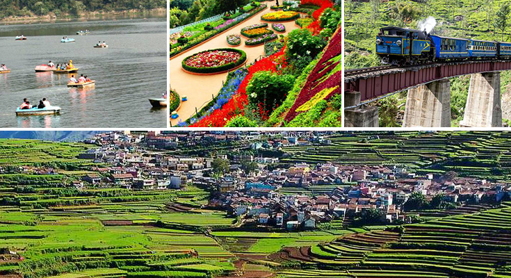 Ooty tour packages for couple