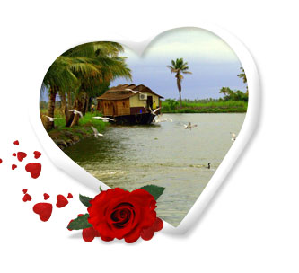 Munnar Honeymoon Package