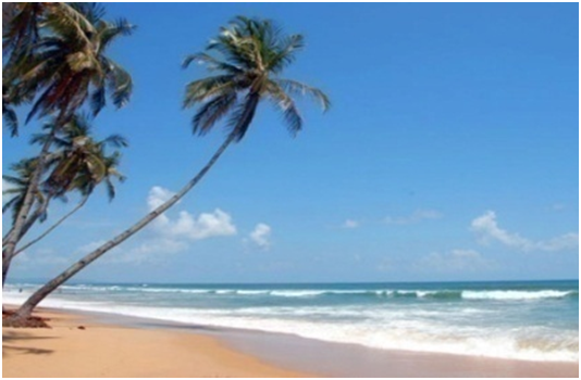 Trips for College Students–GOA (4D/3N)
