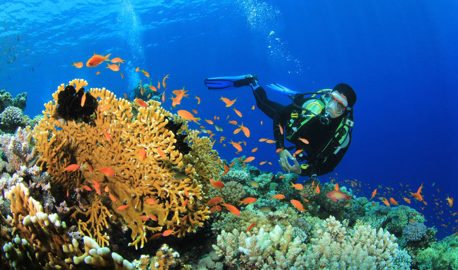 Andaman Best Value Package