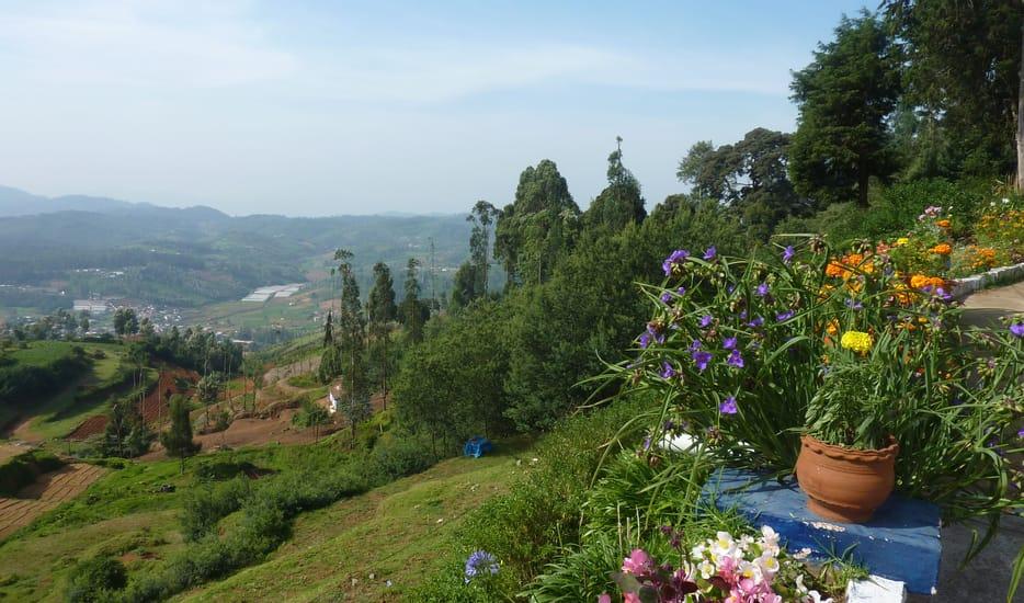 Charming Mysore & Scenic Ooty